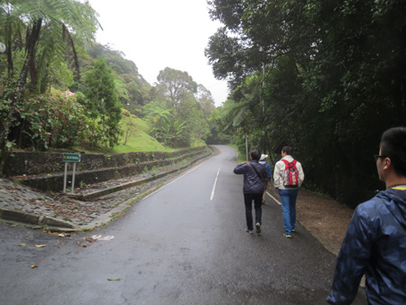 マレーシア1310〜 590