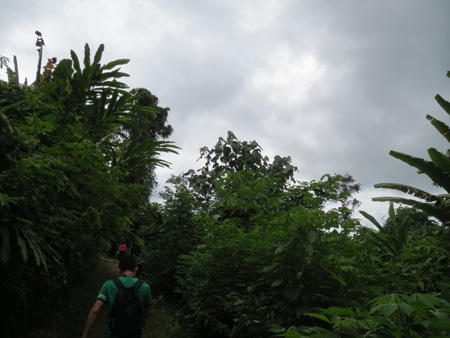 マレーシア1310〜 638