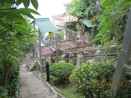 タイ・サムイパンガン1303 236