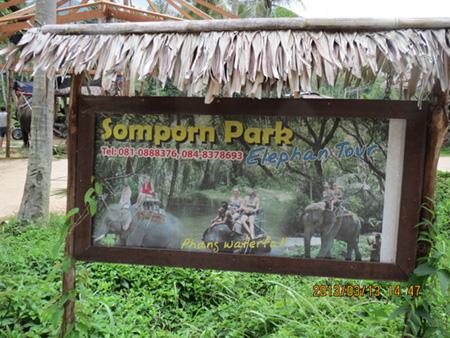 タイ・サムイパンガン1303 332
