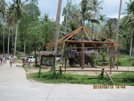 タイ・サムイパンガン1303 331
