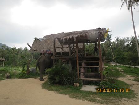タイ・サムイパンガン1303 334