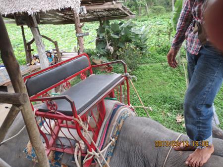 タイ・サムイパンガン1303 335