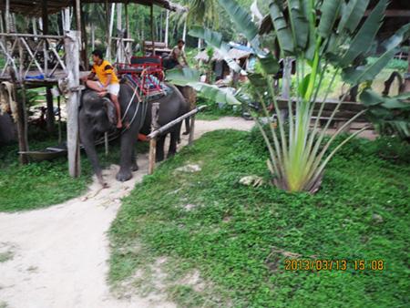 タイ・サムイパンガン1303 338
