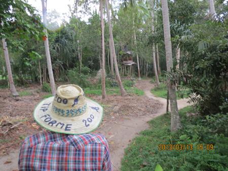 タイ・サムイパンガン1303 340