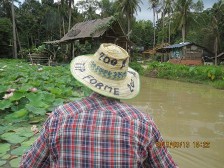 タイ・サムイパンガン1303 358