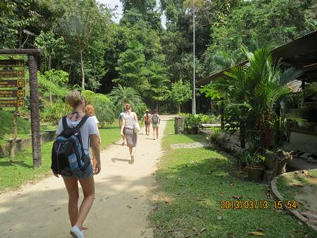 タイ・サムイパンガン1303 365
