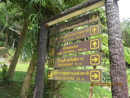 タイ・サムイパンガン1303 366
