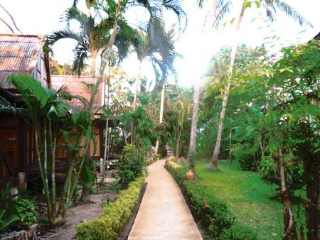 タイ・サムイパンガン1303 434