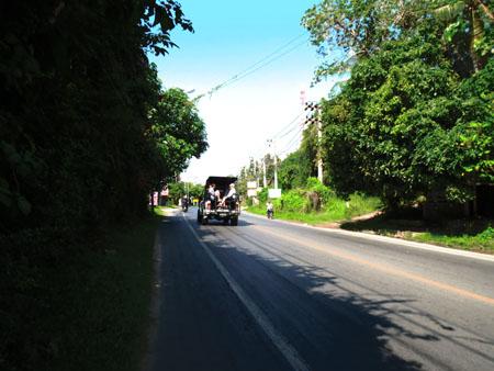 タイ・サムイパンガン1303 455