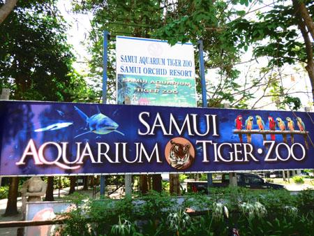 タイ・サムイパンガン1303 457