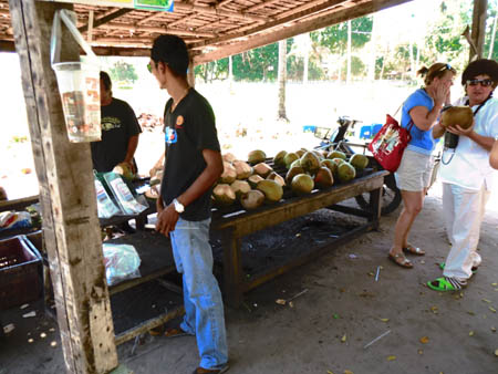 タイ・サムイパンガン1303 606