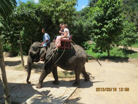 タイ・サムイパンガン1303 635