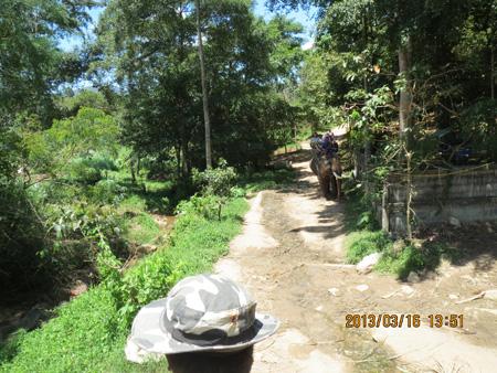 タイ・サムイパンガン1303 639