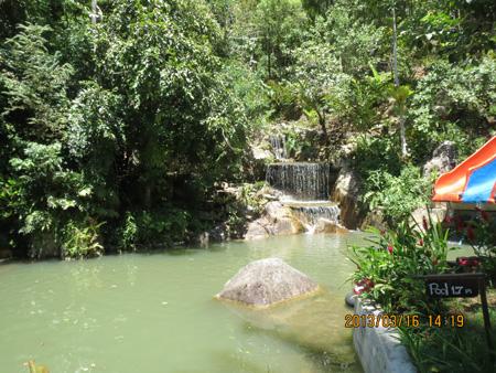 タイ・サムイパンガン1303 661