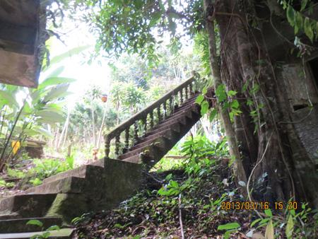 タイ・サムイパンガン1303 679