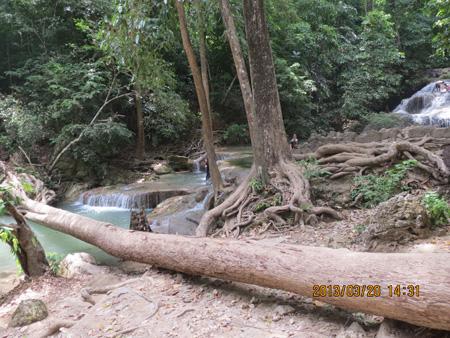 タイ・サムイパンガン1303 986