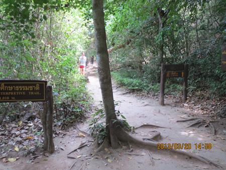 タイ・サムイパンガン1303 1017
