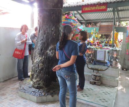 phuket140106 089