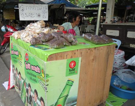 phuket140106 086