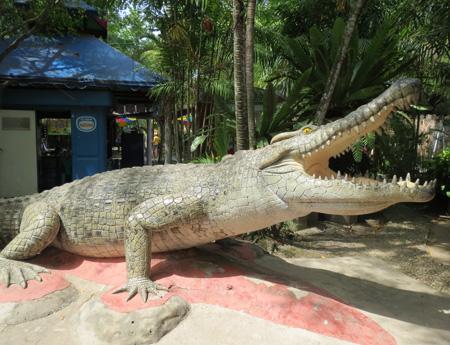 phuket140106 250