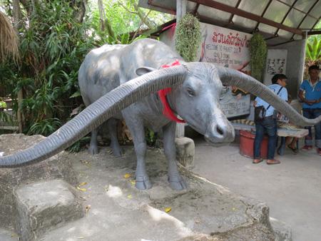 phuket140106 266