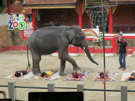 phuket140106 260
