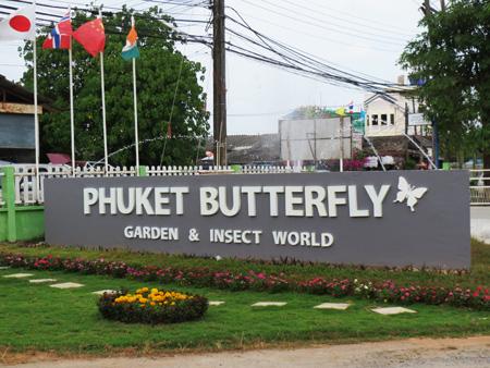phuket140106 295
