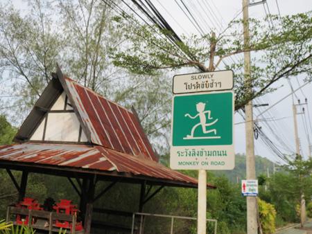 phuket140106 330