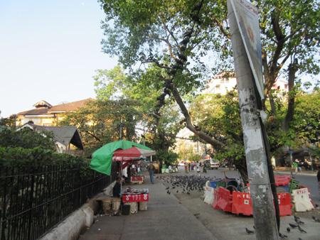 20150111_ミャンマー_5358